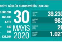 koronavirus turkiyr tablosukoronavirus turkiyr tablosu