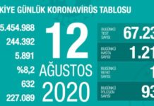 covid_19 turkiye tablosu1