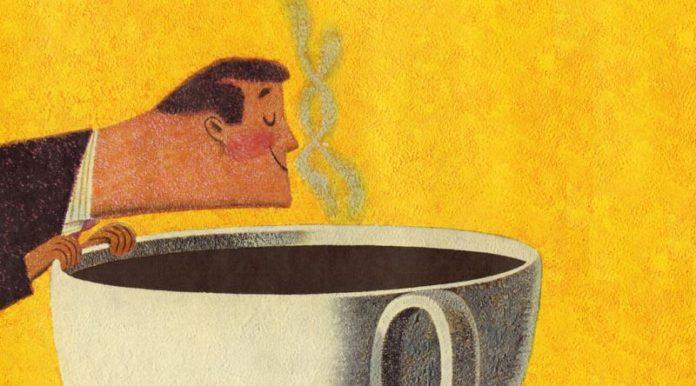 Kahve Konusunda Pek Bilgi Sahibi Olmayanlar İcin Fikir Verecek kivamda Bir ozet